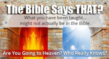The Bible Says THAT?